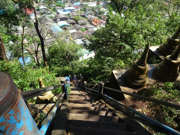 Stufenkater